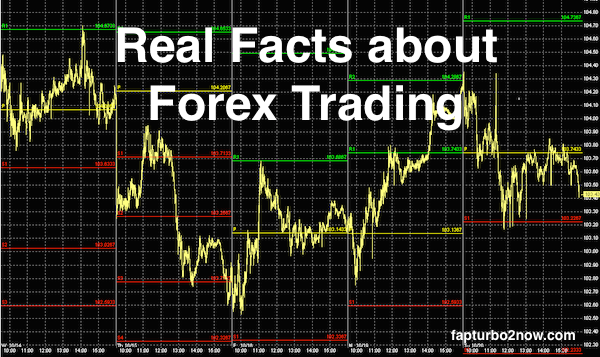 real-facts-forex-trading